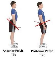 anterior and posterior pelvic tilt